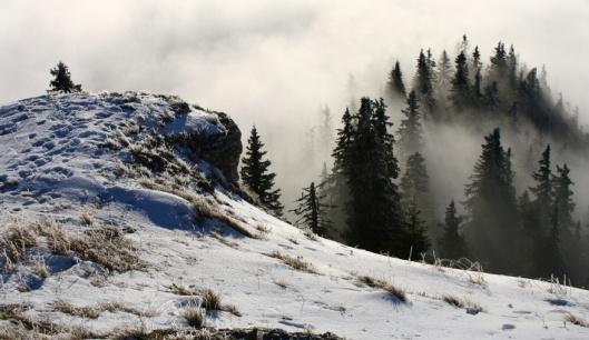 Stratené v hmle,  Autor: Martin Grieš, zdroj:www.tatranskepanoramy.sk