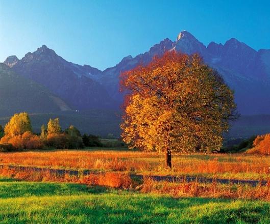 jeseň v Tatrách, zdroj: www.ephoto.sk/workshopy/jesenna-krajina/